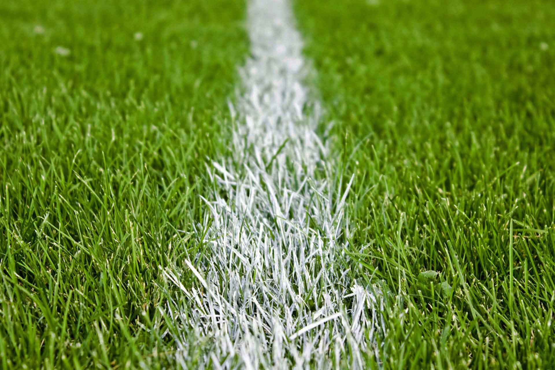 football-grass-pitch-101072b